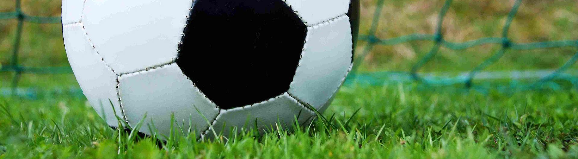 Soccer Ball Mass Youth Referee